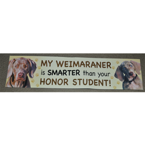 """My Weimaraner Is Smarter Than Your Honor Student"""