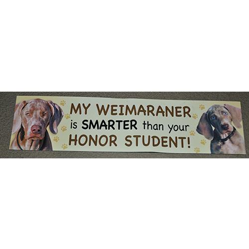 """My Weimaraner Is Smarter Than Your Honor Student"""