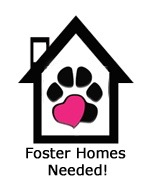 foster-home-image